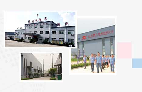 ShanDong TengGong Bearing Co; Ltd.